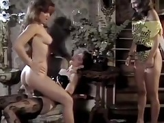 Porn stars fucking hot playgirl